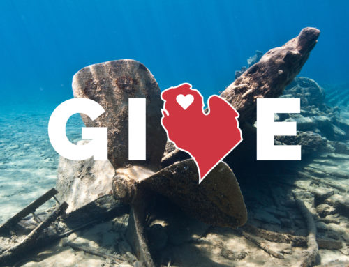 Giving Tuesday – Your Chance to Give Back!